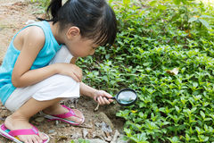 Asian Chinese little girl exploring grass with magnifying glass Stock Photo