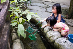 Asian Chinese Little Girls Fishing With Scoop Net At Pond Stock Photos
