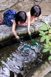 Asian Chinese Little Girls Fishing With Scoop Net At Pond Stock Photo