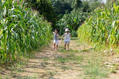 Asian Chinese Little Sisters visiting organic farm. Outdoor stock image