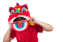Asian Chinese man perform lion dance celebrating Chinese New Yea Stock Photo