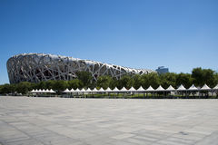 Asian Chinese, modern architecture, the National Stadium, the bird's nest Stock Image