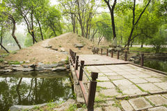 Asian Chinese Old Summer Palace natural scenery Stock Photo