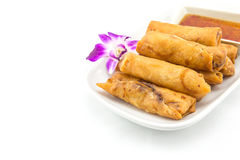 Asian chinese spring rolls Stock Image
