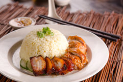 Asian chinese style chicken rice Stock Image