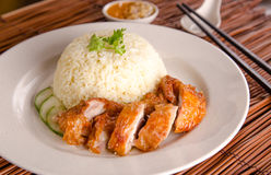Asian chinese style chicken rice Stock Photos