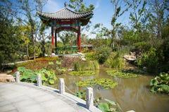 Asian Chinese, Tianjin Wuqing, Green Expo, garden building, Pavilion Stock Image