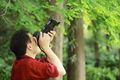 Portrait of a nature photographer cover his camera screen with face in a spring park garden forest Stock Photography