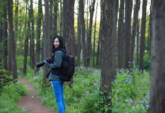 Nature travel photographer woman. Asian chinese Woman Nature travel photographer woman taking pictures in forest during hiking trip. Beautiful happy smiling Stock Photo