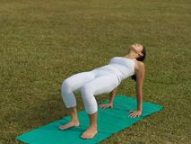 Asian chinese woman practising yoga outdoors. Asian chinese woman practising yoga on a outdoor grass patch Stock Images