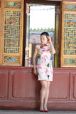 Asian Chinese woman in traditional cheongsam enjoy free time Royalty Free Stock Photos