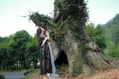 Asian Chinese Young girl pray in front of an old tree. Asian Chinese Young beautiful woman enjoy free time, beautiful graceful girl, healthy living concept, pure Stock Images