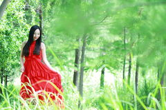 Asian Chinese Young girl walk in forest, enjoy peaceful life. Asian Chinese Young beautiful woman enjoy free time, beautiful graceful girl, healthy living Royalty Free Stock Photo