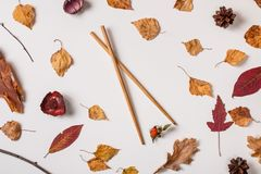Asian chopsticks hold berry in autumn set stock photo