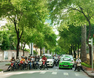 Asian city, green tree, Vietnamese street Stock Image