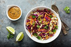 Asian cole slaw with peanut butter dressing. Asian cole slaw with sesame and peanut butter dressing stock images