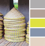 Asian conical hat.  color palette swatches Stock Photography
