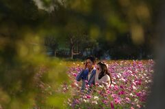 Asian couple on flowering field Royalty Free Stock Image