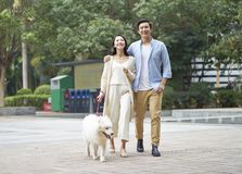 Asian couple laughing while walking dog outdoor in garden. Chinese couple laughing while walking dog outdoor in garden stock photo