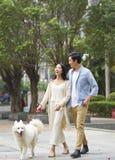 Asian couple laughing while walking dog outdoor in garden. Chinese couple laughing while walking dog outdoor in garden stock photos