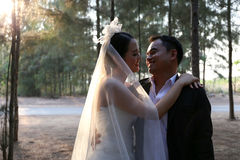 Asian couple in lovely wedding dresses in a pine forest. Happy Asian couple wearing suit and bridal gown stay in a pine forest. The groom holds his bride in his Royalty Free Stock Image