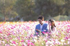 Asian couple on meadow Stock Photos