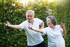 Asian Couple practicing Tai Chi in the park together. Healthy, workout and relaxation concepts. Smiling Chinese or Thai or Japanese people royalty free stock image