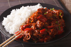 Asian Cuisine: Rice with pork in sweet and sour sauce closeup. h Stock Photo