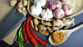 The Asian cuisine spices and curry Stock Photography