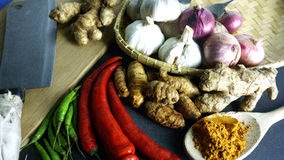 The Asian cuisine spices and curry Stock Images