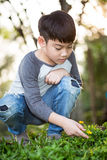 Asian cute boy discovers the joy of yellow flower Stock Photo
