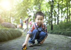 Asian cute boy playing car toy Royalty Free Stock Image