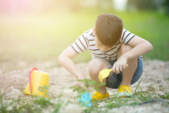 Asian cute boy playing with toys in garden Royalty Free Stock Image