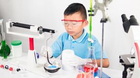 Asian cute child learning science in laboratory on gray whit background. Cute child boy playing and funny in knowledge about lab experiment and instrument of Stock Photos