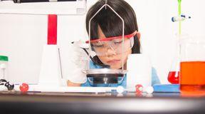 Asian cute child learning science in laboratory on gray whit background. Cute child girl playing and funny in knowledge about lab experiment and instrument of Stock Photography