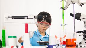 Asian cute child learning science in laboratory on gray whit background. Cute child girl playing and funny in knowledge about lab experiment and instrument of Royalty Free Stock Photography
