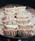 Asian Delights Gyoza Royalty Free Stock Photos