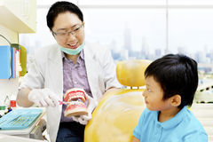 Asian dentist brushing teeth tutorial royalty free stock photos