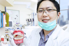 Asian dentist show teeth braces at clinic Stock Image