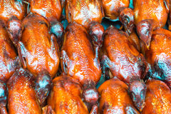 Asian dish with grilled little birds served on the street in Bei Royalty Free Stock Images