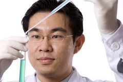 Asian Doctor With Test Tube. In white background Royalty Free Stock Photo