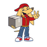 Asian dog in courier clothing with box. Shows victory sign Stock Images