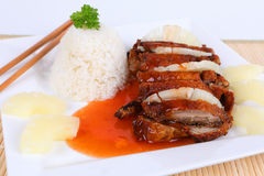 Asian duck with rice Royalty Free Stock Photography