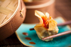 Asian Dumpling Royalty Free Stock Images