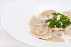 The asian dumplings with sauces. Close-up of the asian dumplings with sauces Royalty Free Stock Photo