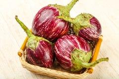 Free Asian Eggplant Stock Photography - 115049882