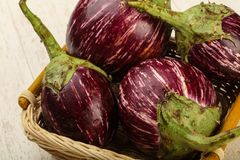 Asian eggplant royalty free stock images