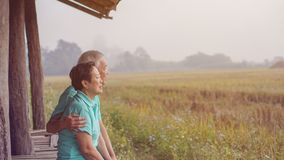 Asian elderly couple at farm rice field business happy nature li. Asian elderly couple at argriculture farm rice field business happy nature lifestyle stock images