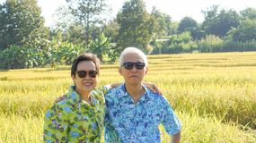 Asian elderly couple at farm rice field business happy nature li Royalty Free Stock Photography