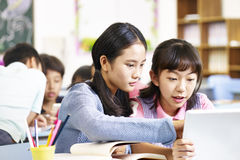 Asian elementary school students working in groups. Two asian elementary school girls using tablet computer while working in group Royalty Free Stock Photography